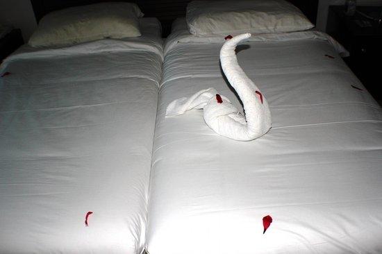 Jaz Mirabel Club: Swan