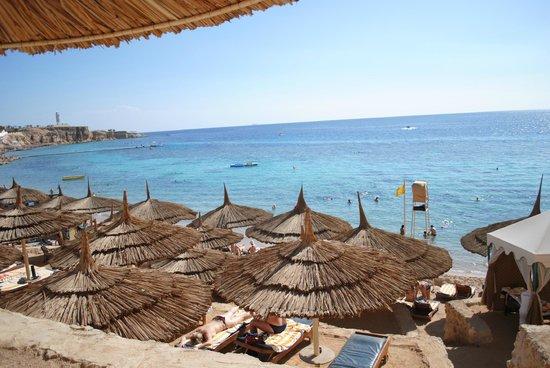 Sharm Cliff Resort: Hadaba beach