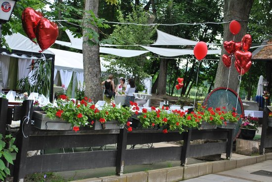 Landgasthof Rote Mühle: Hochzeitsfeier