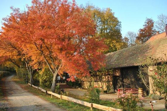 Landgasthof Rote Mühle