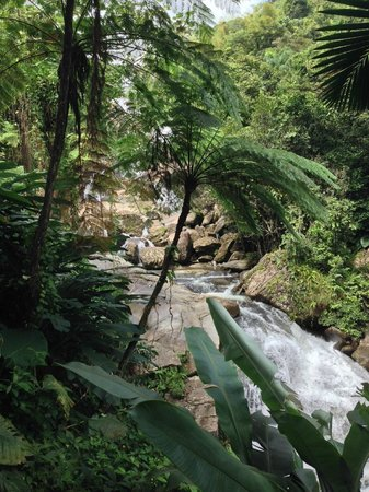 "Casa Flamboyant: Hike to ""private"" waterfall (view from trail) - waterfall is on public land with private access"
