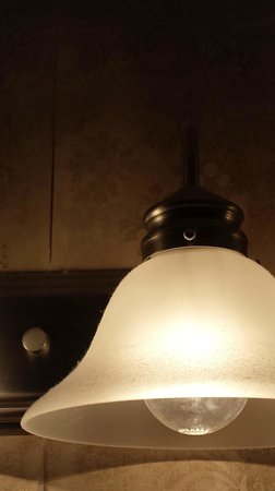Williamsburg Plantation Resort: LOTS of dust on light fixtures in the bathroom