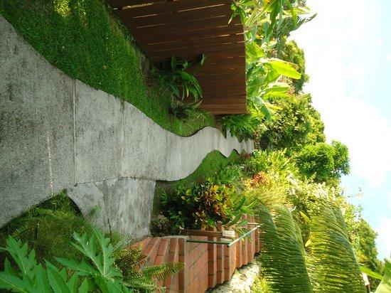 Stonefield Estate Resort : path leading to our private Villa, Frangipani