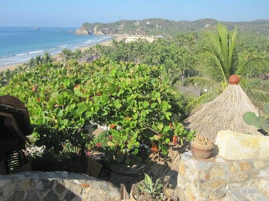La Loma Linda: Bungalows, Yoga and Feldenkrais : looking down to the beach
