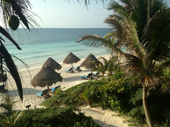 Encantada Tulum: Another view from our room