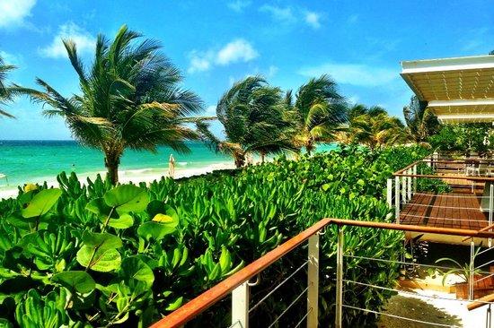 Blue Diamond Luxury Boutique Hotel : View from beachfront casita