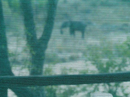 Tanda Tula Safari Camp : Elefante pasando enfrente al tented, visto desde dentro