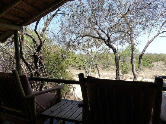 Tanda Tula Safari Camp : Vistas de nuestra terraza