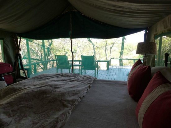 Tanda Tula Safari Camp: Vistas desde la cama