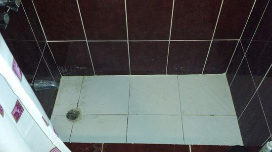 Hotel Alegria: Shower