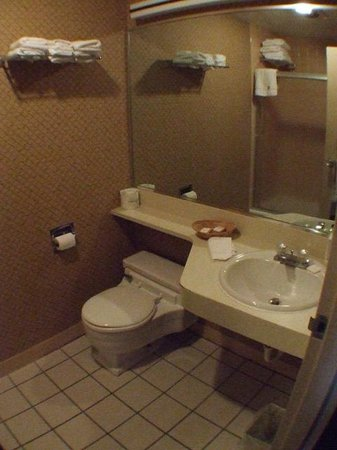 Howard Johnson Closest to the Falls and Casino: Bathroom