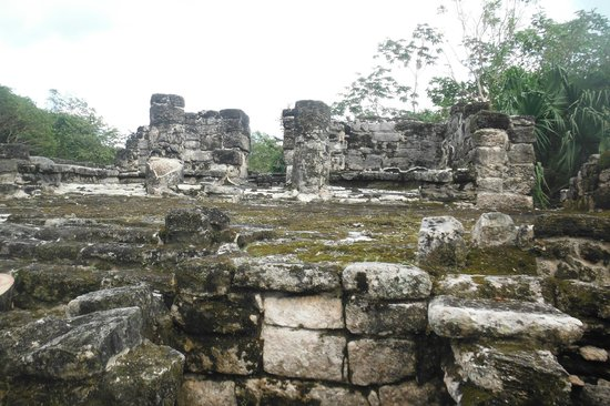 Pantera Jeep Tours: San Gervasio Mayan ruins