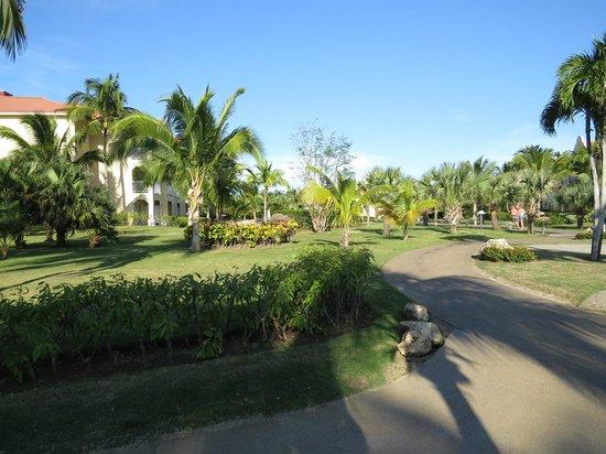 Paradisus Princesa del Mar Resort & Spa: parque