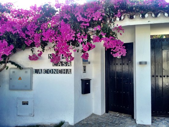 Casa la Concha: Entrance to the property