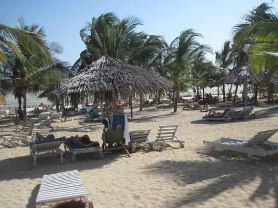 Jacaranda Beach Resort: spiaggia jacaranda