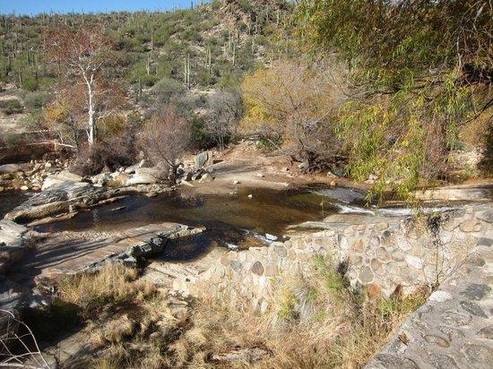 Sabino Canyon: waterfall