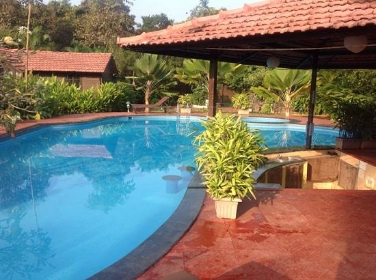 The Fern Gardenia Resort : Pool View from sunbeds
