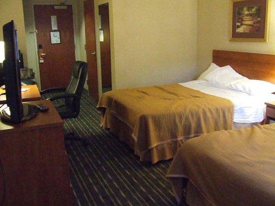 Hotel Aura San Bruno: Room