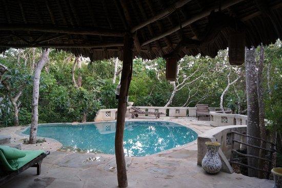 Kenyaways Beach Bed & Breakfast : Piscine