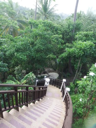 Koh Tao Star Villa: View of stairs leading upto the apartment