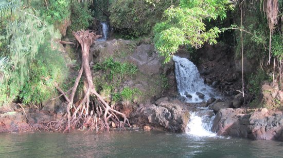 Hilo Reeds Bay Hotel : Waterfalls Close-by
