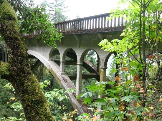 Columbia River Gorge National Scenic Area: columbia river scenic road
