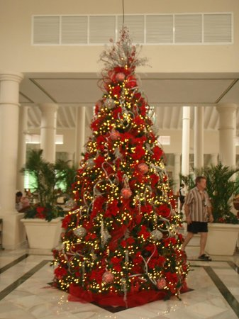 Luxury Bahia Principe Ambar Don Pablo Collection : Lobby Bar xmas tree.  One of the best we have ever seen.  :-)
