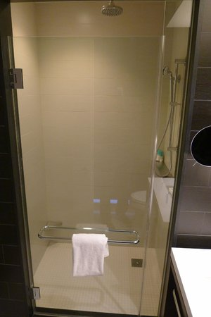 Hand and Rain Shower! - Picture of Hyatt Centric Times Square New ...