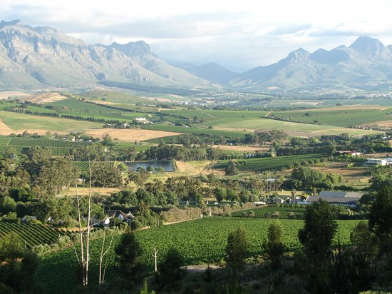 Devonvale Golf & Wine Estate : The view of the surrounding area.