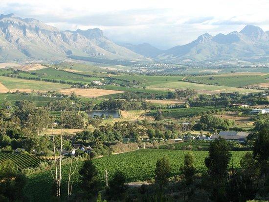 Devonvale Golf & Wine Estate: The view of the surrounding area.