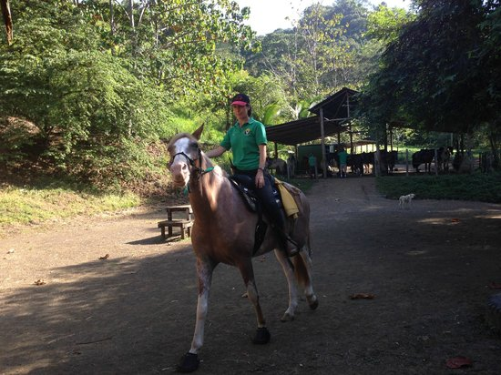 Discovery Horseback Tours: Instruction - Starting out