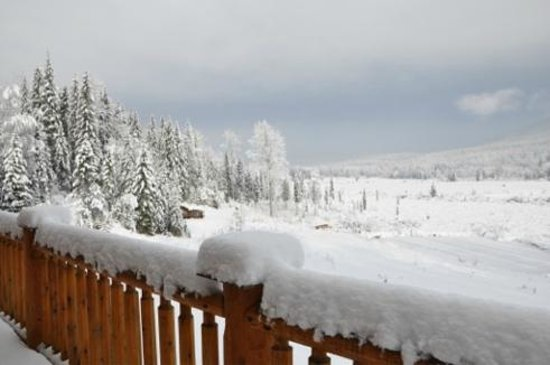 Clearwater Springs Ranch: View over the meadow and cottage...