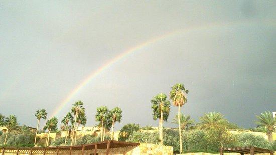 Kempinski Hotel Ishtar Dead Sea: Resort