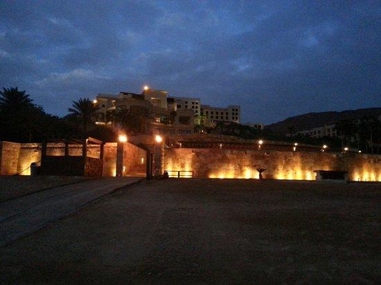Kempinski Hotel Ishtar Dead Sea: Resort from beach site