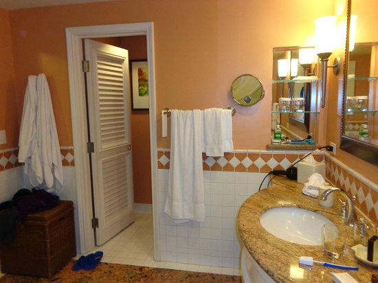 Grand Wailea - A Waldorf Astoria Resort : half the bathroom