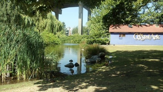 Shady spot with water view in quiet corner of Granville Island