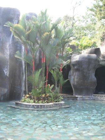 Baldi Hot Springs Hotel Resort & Spa : Una de las piscinas