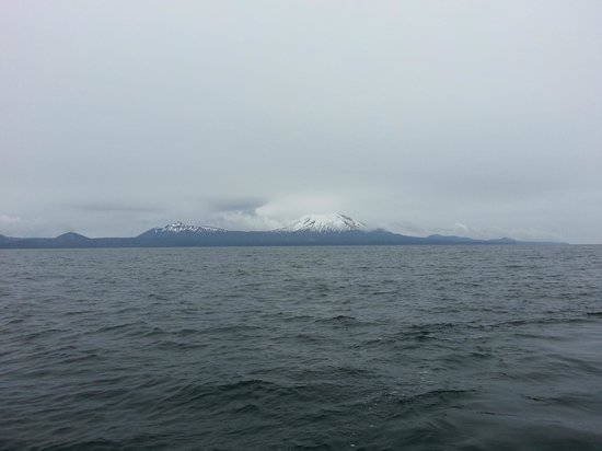 Talon Lodge & Spa: View from fishing boat