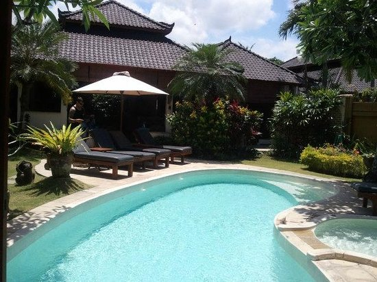 Dyana Villas : Villa and pool