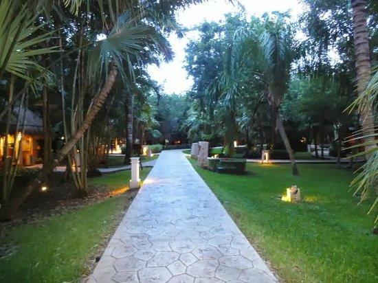 Iberostar Cozumel: Hotel