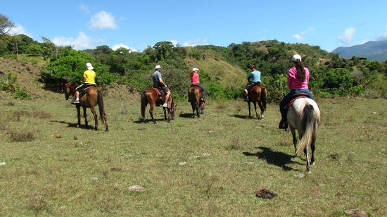 Franklin's Horseback Riding : En familia