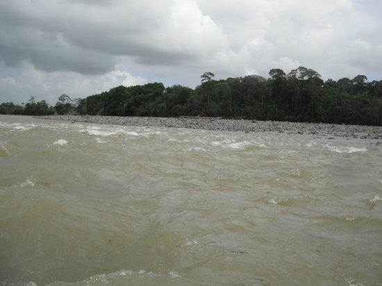 Aguas Bravas Rafting Company: Río Chirripó