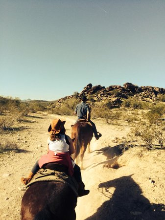 Arizona Horses (Ponderosa Stables and South Mountain Stables): Along the trail