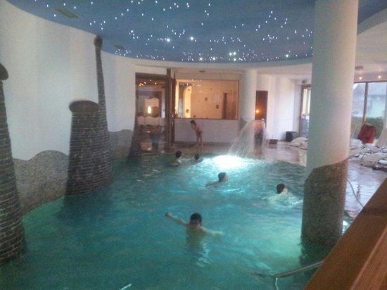 Family Hotel Belvedere: La piscina