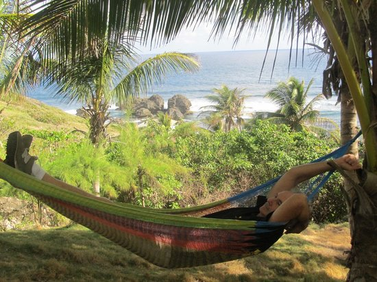 Sea-U Guest House: So relaxing in the hammock