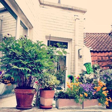 Hotel de Orangerie : Courtyard
