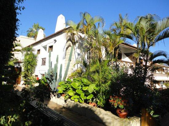 Hacienda Del Sol: hotel gardens