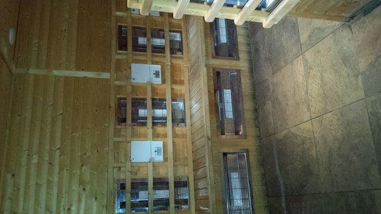 The Fairlawns Spa: infa red sauna