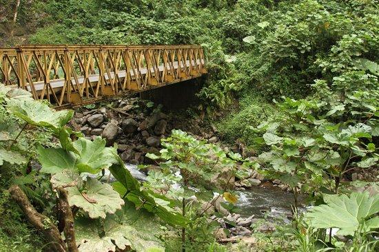 La Paz Waterfall Gardens: Vara Blanca, Коста-Рика