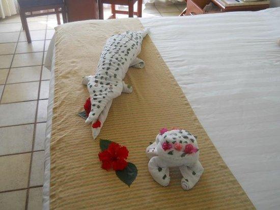 Emporio Ixtapa : crocodile in my room...Thanks Audi
